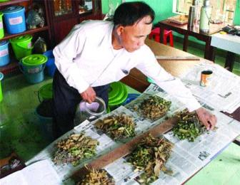 Traditional herbal medicine still saves lives