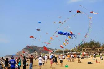 Kites to fill skies above Grand Ho Tram Strip on New Year's Day