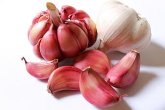 Garlic gains human health