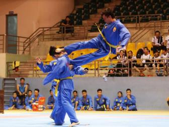 Vovinam day manh hoat dong quoc te trong nam 2017